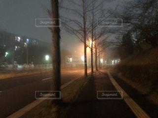 雨の日の夜道に光る街灯の写真・画像素材[2168382]