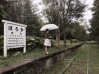 女性,風景,雨,傘,屋外,森,駅,水,線路,草,人物,雫,廃線,雨の日,廃駅