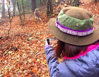 鹿を撮る!の写真・画像素材[2173871]