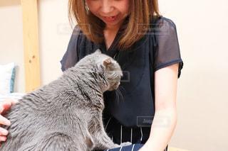 猫をふりする女性の写真・画像素材[2291316]