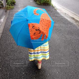 子ども,猫,雨,傘,屋外,散歩,道路,女の子,外,長靴,幼児,梅雨,天気,レインコート,雨の日,おんな,猫の傘