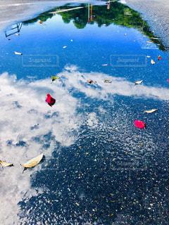 雨上がりの朝の写真・画像素材[2220091]