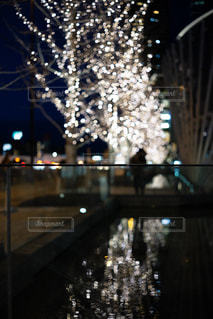 屋外,イルミネーション,グランフロント大阪,うめきた広場,シャンパンゴールド