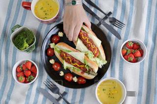 食べ物,ランチ,テーブル,野菜,皿,サラダ,贅沢ランチ,ホットドッグ,ファストフード,大皿,ジョンソンヴィル