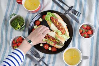 食べ物,ランチ,テーブル,果物,トマト,野菜,皿,サラダ,贅沢ランチ,ホットドッグ,ファストフード,大皿,ボウル,ジョンソンヴィル