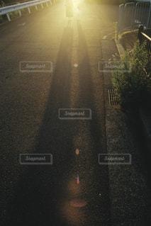 家族,親子,夕方,影,日常,子供,オレンジ,光,道端,夕陽,お散歩,晴れた日