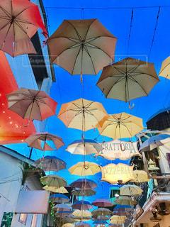 傘,カラフル,水,雫,カンボジア,雨の日