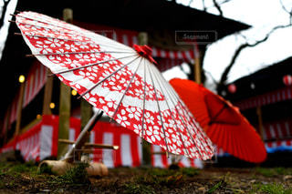 公園,傘,水,お祭り,和傘,雫,雨の日