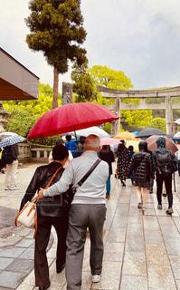 傘,水,夫婦,雫,雨の日