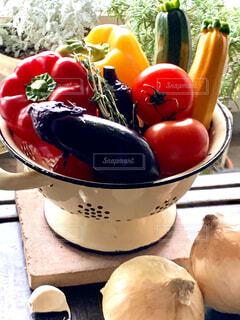 夏野菜フォトの写真・画像素材[4664419]