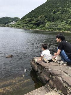 池,山,鴨,鯉
