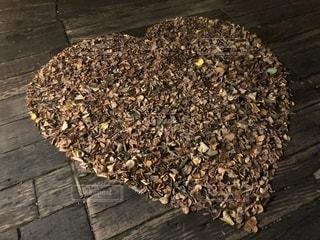 秋,木,屋外,北海道,田舎,落ち葉,ハート,マーク
