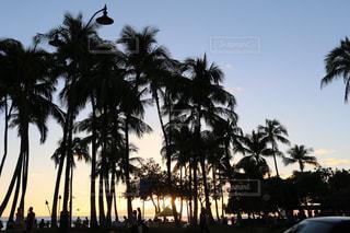 ワイキキビーチのサンセットの写真・画像素材[2334001]