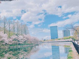 水面に映る桜とビルの写真・画像素材[4305234]