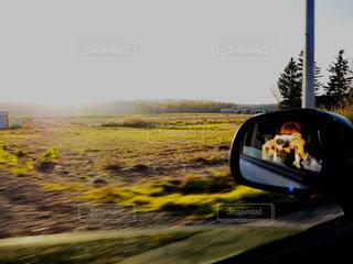 車の側面鏡の写真・画像素材[2269355]