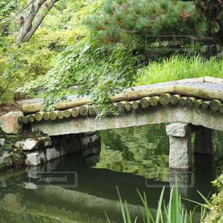 夏の庭の写真・画像素材[2396719]