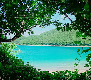 海,大自然,五島列島,t