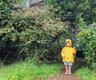 木の前に立っている少年の写真・画像素材[2102027]
