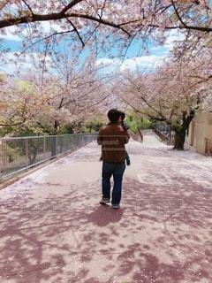 桜,かわいい,親子,人物,笑顔,イベント,動物園,抱っこ,父親,パパ,男の子,父,ありがとう,お父さん,父の日,感謝,6月16日