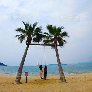 ビーチ,後ろ姿,砂浜,ブランコ,ヤシの木,糸島