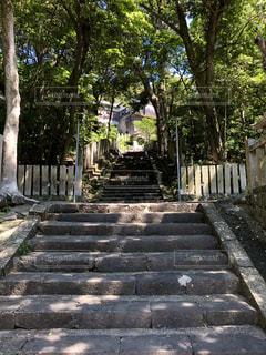 神様につづく階段の写真・画像素材[2207313]