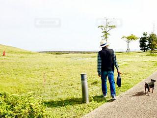 男性,犬,芝生,屋外,晴れ,散歩,レジャー,お散歩,ライフスタイル,おでかけ