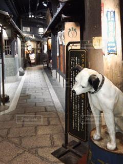 昭和の街並みの写真・画像素材[2828916]
