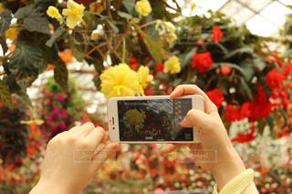 花を持っている人の写真・画像素材[2285970]