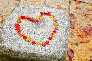 秋,屋外,もみじ,景色,ハート型,ハート,女子旅,カメラ旅,四季,お出かけ,フォトジェニック,インスタ映え
