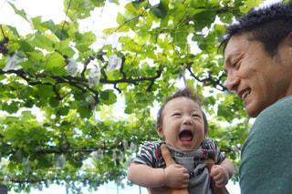 かわいい,笑顔,赤ちゃん,葡萄,父さん