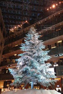 東京の冬の写真・画像素材[2716944]