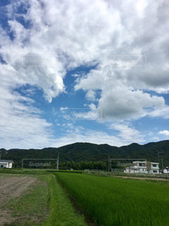 空に雲のある大きな緑の野原の写真・画像素材[2211059]