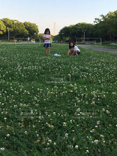 自然,風景,空,草,人物