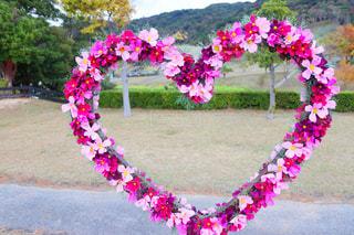花,秋,ピンク,赤,コスモス,紫,ハート,オブジェ,秋桜,マーク