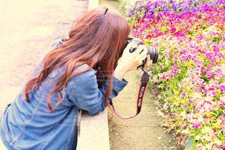 お花フォトの写真・画像素材[2513986]