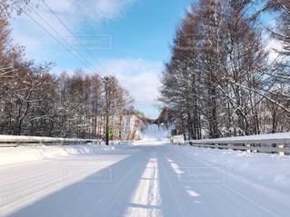 雪に覆われた道路の写真・画像素材[2822072]