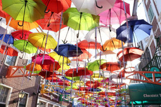 風景,公園,花,雨,屋外,水,長靴,雫,梅雨,天気,レインコート,ビニール傘,雨の日,折り畳み傘