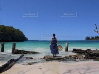 ニューカレドニア イルデパン島のビーチの写真・画像素材[2274451]