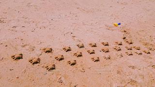 砂浜の写真・画像素材[3009675]