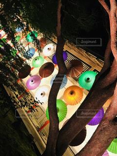 夜,傘,幻想的,鮮やか,カラフル傘