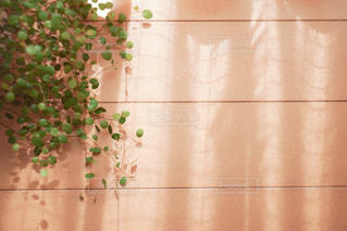 テーブルの上に花の花瓶の写真・画像素材[3033206]