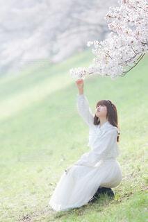 草の中に立っている人の写真・画像素材[4309805]