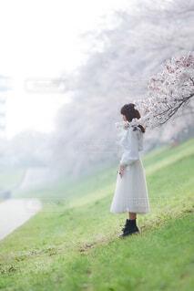 野原に立っている人の写真・画像素材[4309806]