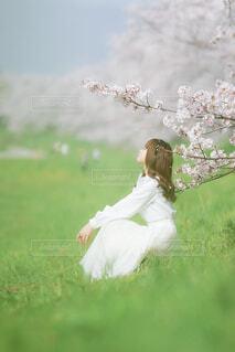 芝生で覆われた畑の上に座っている人の写真・画像素材[4309814]