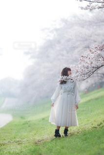 芝生で覆われた畑の上に立っている人の写真・画像素材[4309816]