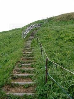 緑豊かな丘のハイキングコースを登るの写真・画像素材[2215196]