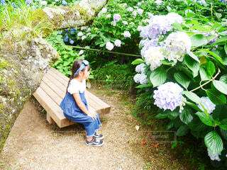 自然,花,子供,女の子,紫陽花,6月,お散歩,JUNE,お出かけ,紫陽花畑