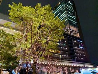空,建物,屋外,樹木,イルミネーション,高層ビル,雨の日,グランフロント大阪,シャンパンゴールド