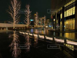 建物,夜,屋外,水面,反射,樹木,イルミネーション,都会,高層ビル,グランフロント大阪,シャンパンゴールド