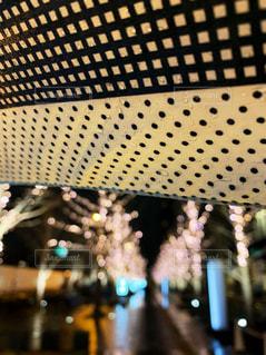 ビル,木,傘,イルミネーション,道,雨の日,グランフロント大阪,シャンパンゴールド